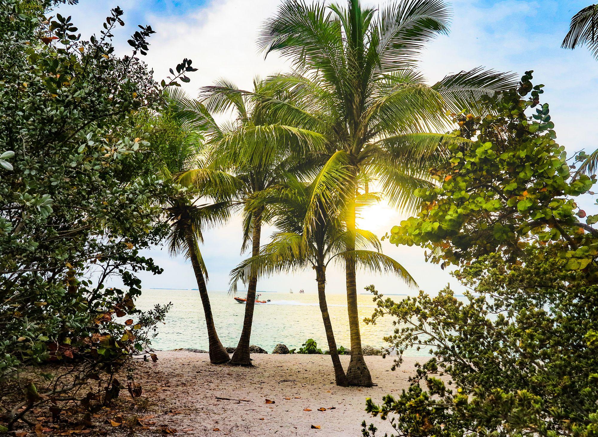 Key West Florida Ocean View