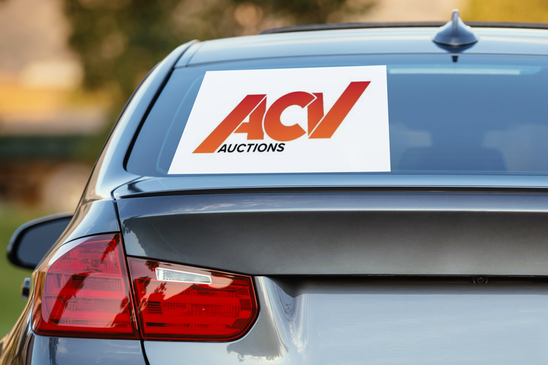 ACV Auctions Initial Public Offering