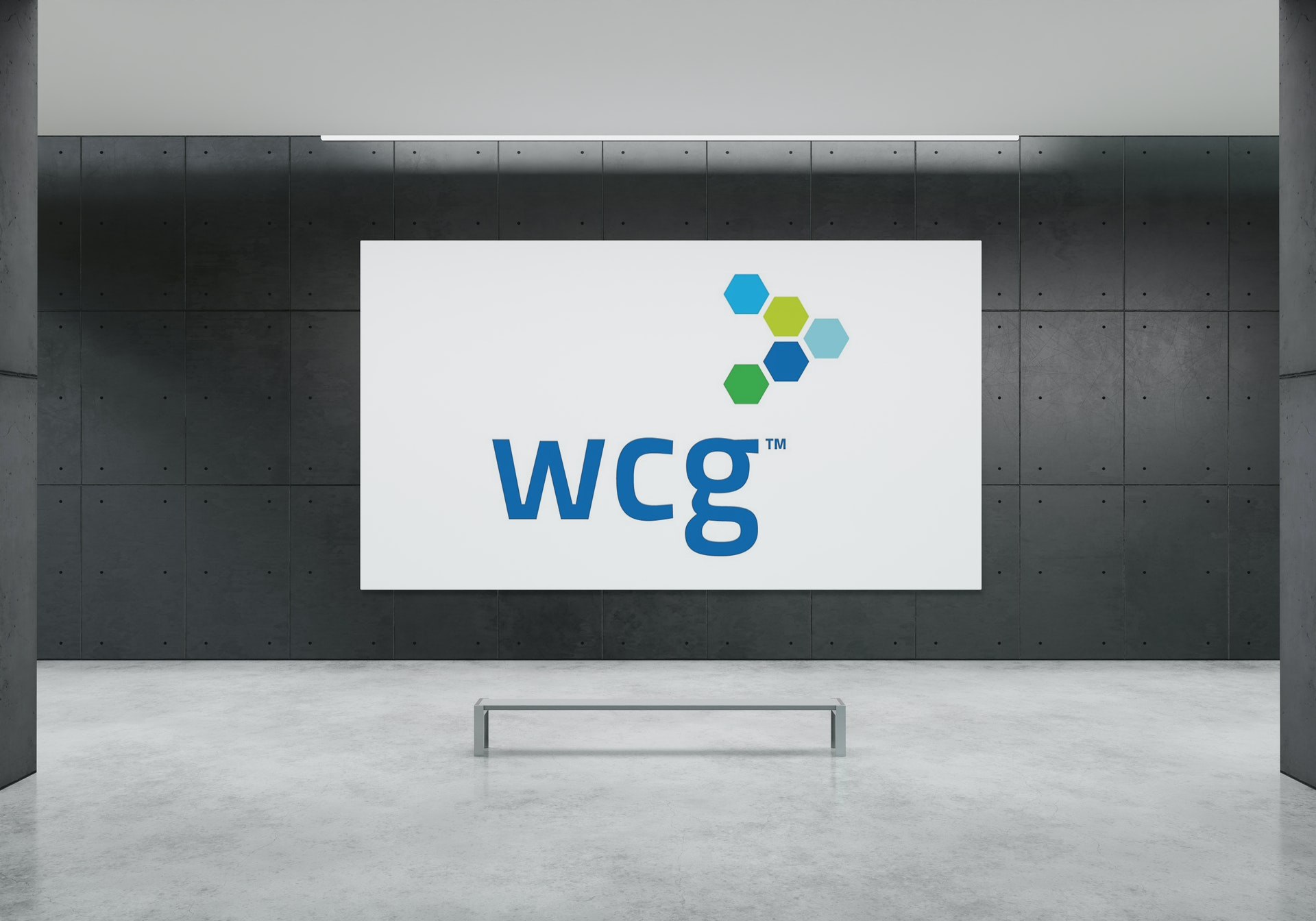 WCG Clinical Initial Public Offering